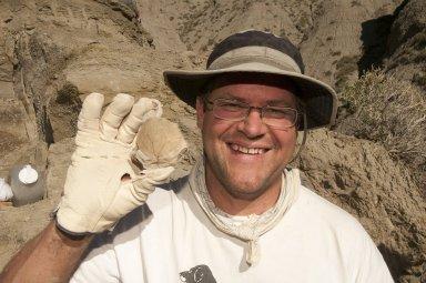 Dr. Kirk Johnson holds up a newly discovered leaf specimen.