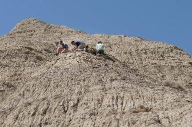 The DMNS Team excavates a site on a ridgeline.