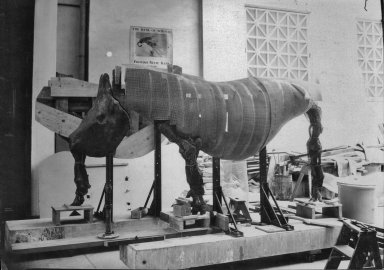 Wooden Armature of Rhinoceros at The Field Museum