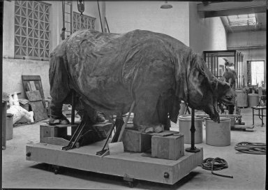 Rhinoceros hide laid over clay model The Field Museum