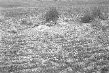 Slab on Mary Evan's farm