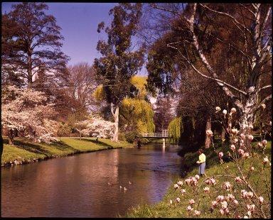 Spring on the Avon River