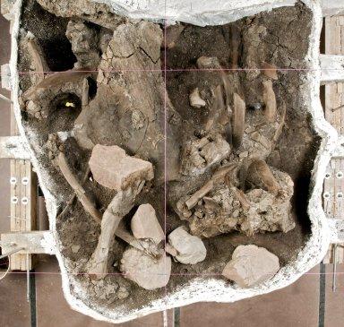 Clay Mammoth in atrium