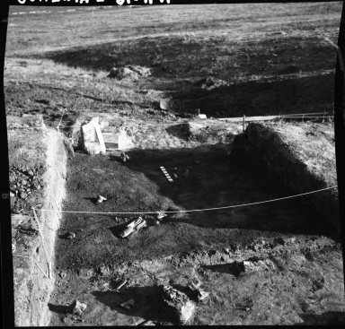 Excavation bed with projectile points in-situ
