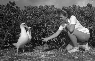Fieldwork on Midway Island