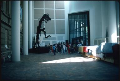 Tyrannosaurus Rex Articulation Project