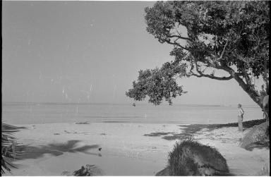 Fieldwork on Fiji