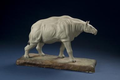 Prehistoric Rhinoceros Indricotherium