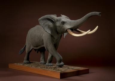 Charging Elephant aka Suicide Sam