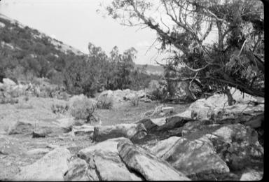 Desert landscape surrounding an archaeological site