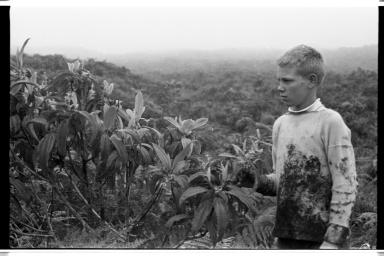 Sigvart Horneman on Santa Cruz Island, Galapagos Islands