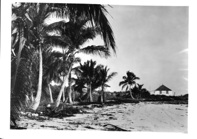 Farmers Cay beach