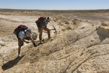 New Mexico fieldwork