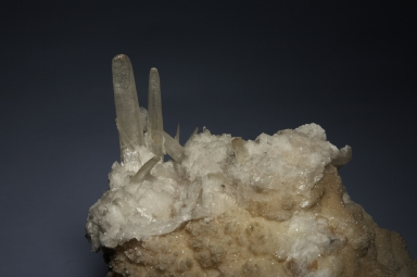 Gypsum crystals on selenite
