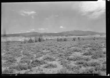Near Montrose Colorado