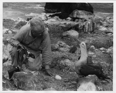 Alfred M. Bailey with Albatross
