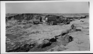 Mammoth Skull Site