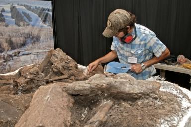 Working on Mammoth in Pop-up Exhibit