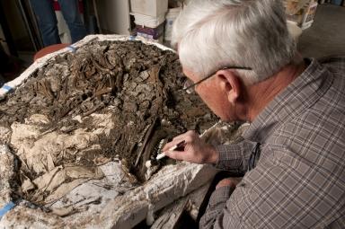 Working on Deer Matrix in Paleo Lab from Snomastadon Excavation