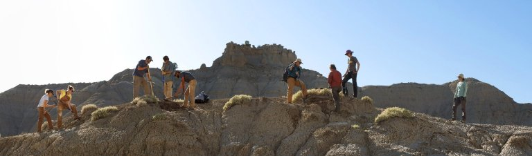 A panoramic view of the DMNS Team hard at work on the Kaiparowits Plateau in Utah.
