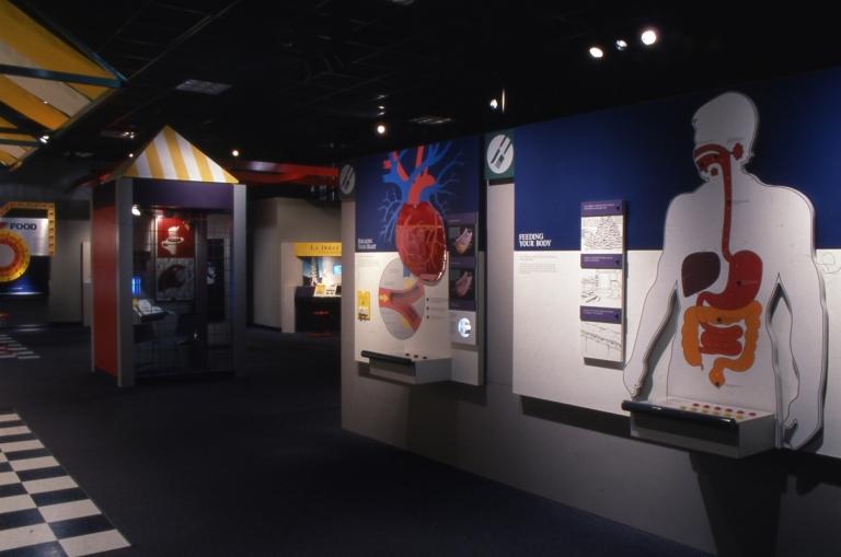HOL, Phase II, Exhibit
