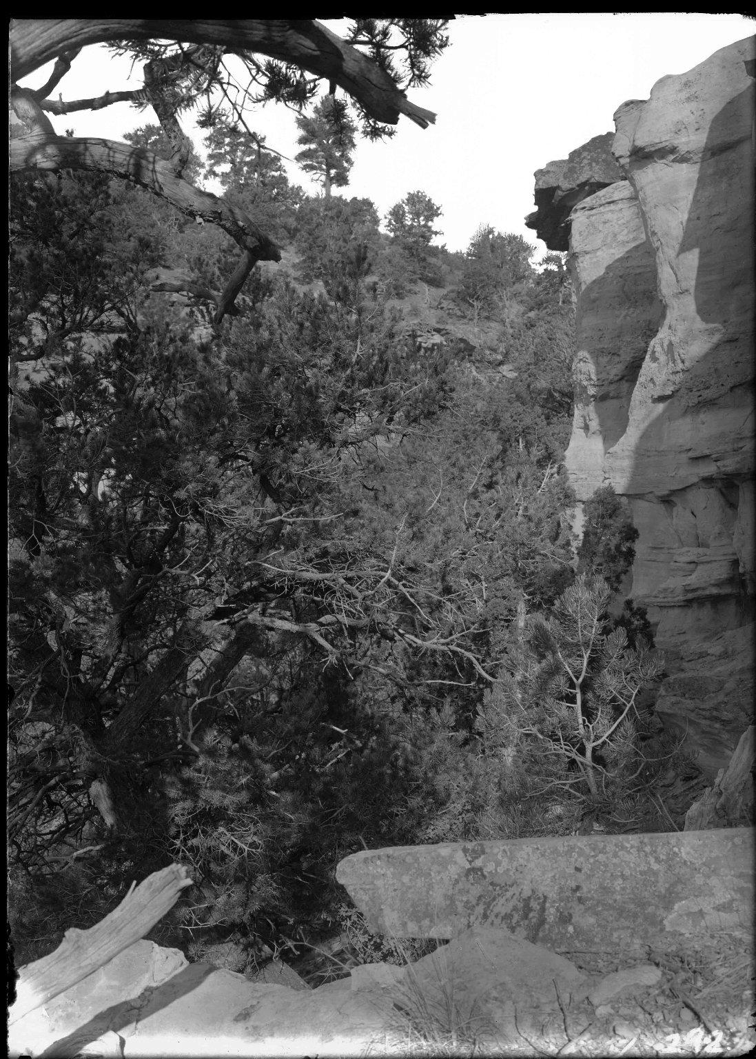 Rimrock near Dolores