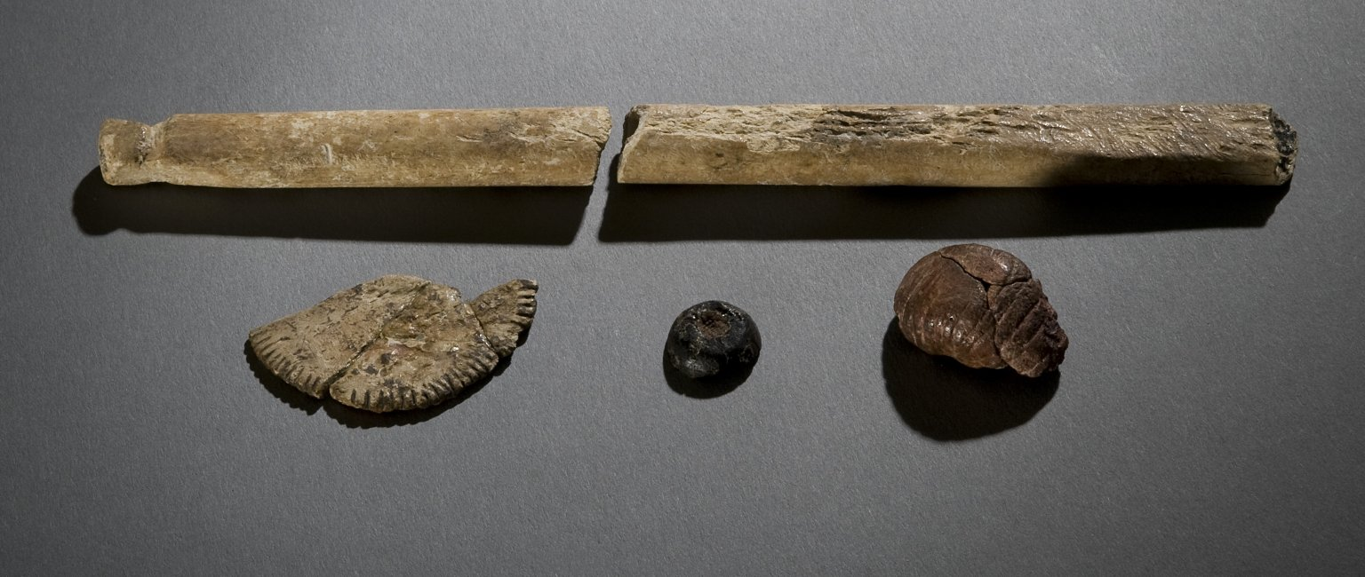 Bone fragments and beads(?)