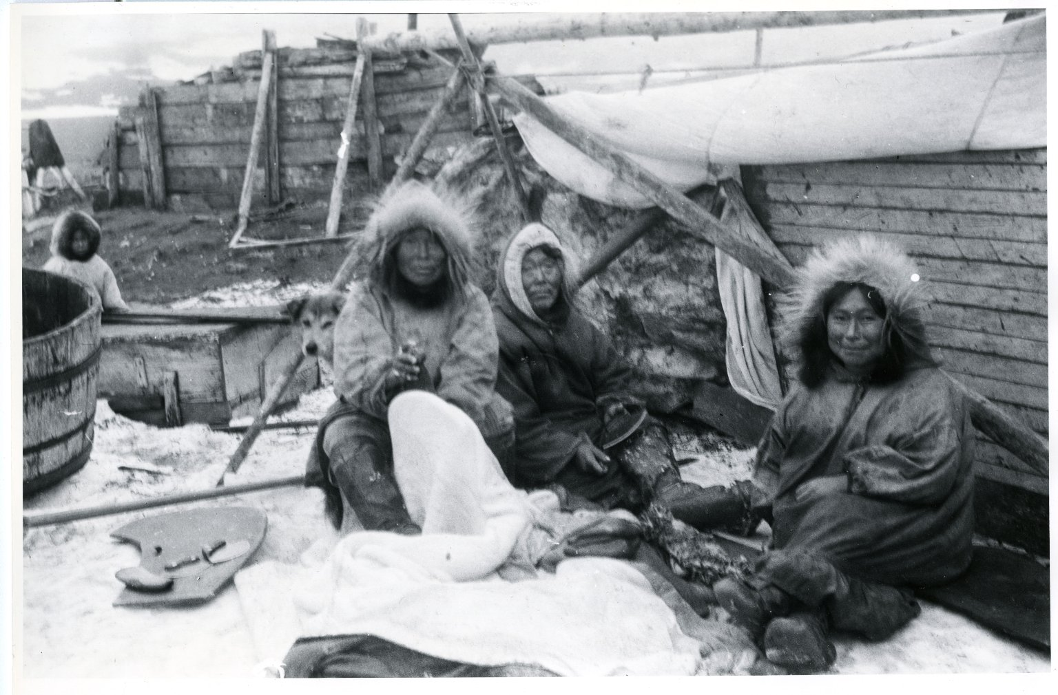 Natives splitting walrus hides