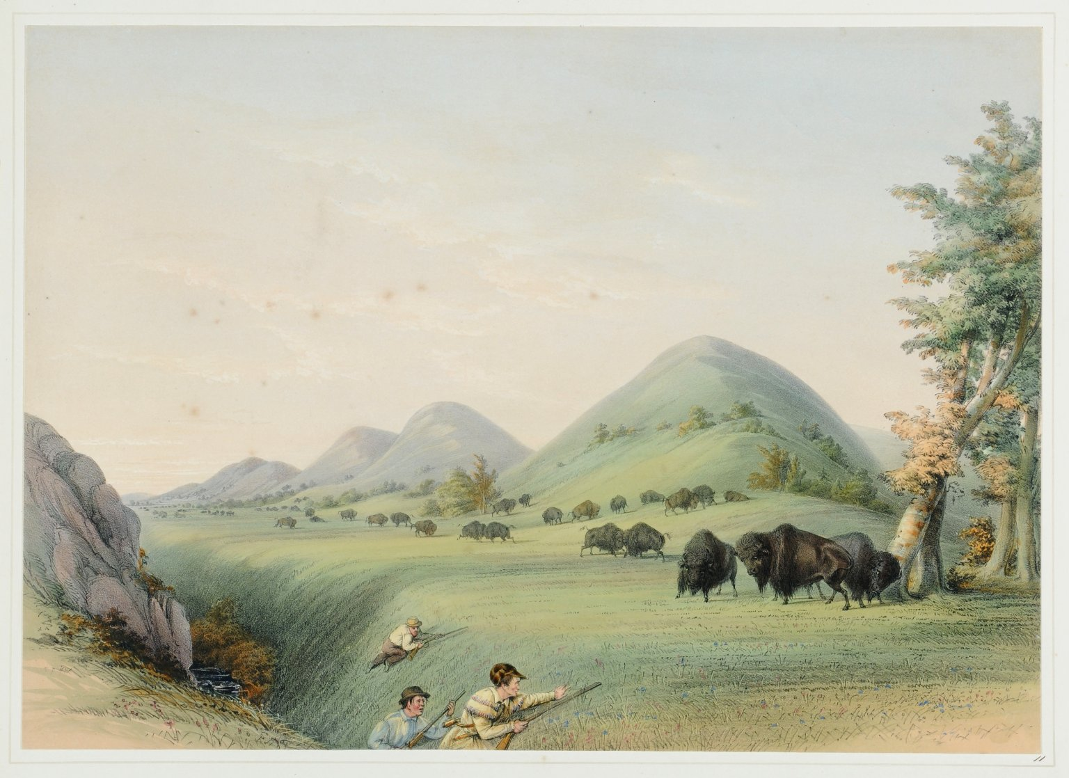 Buffalo Hunt. Approaching in a Ravine.
