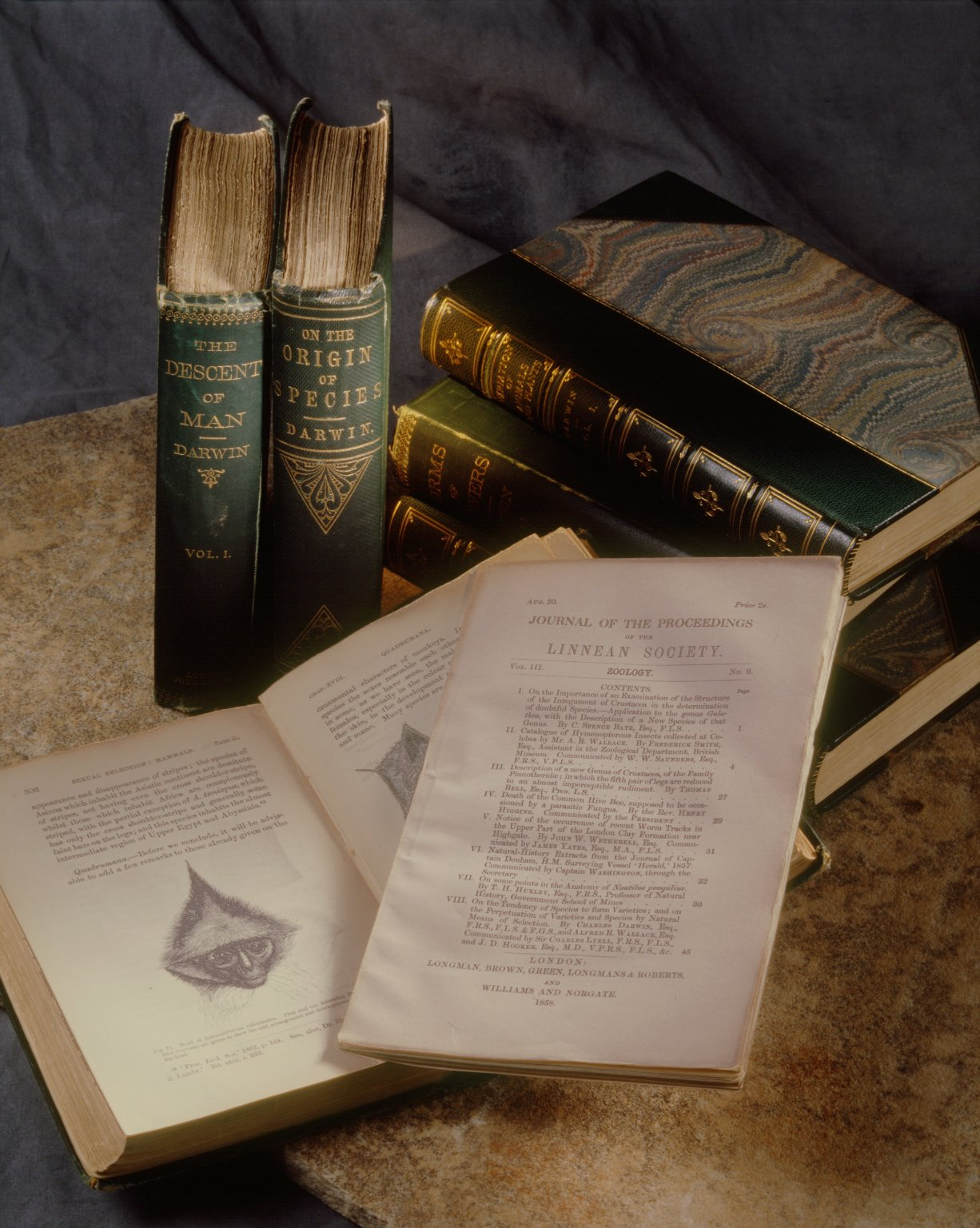 Montage of books by Charles Darwin