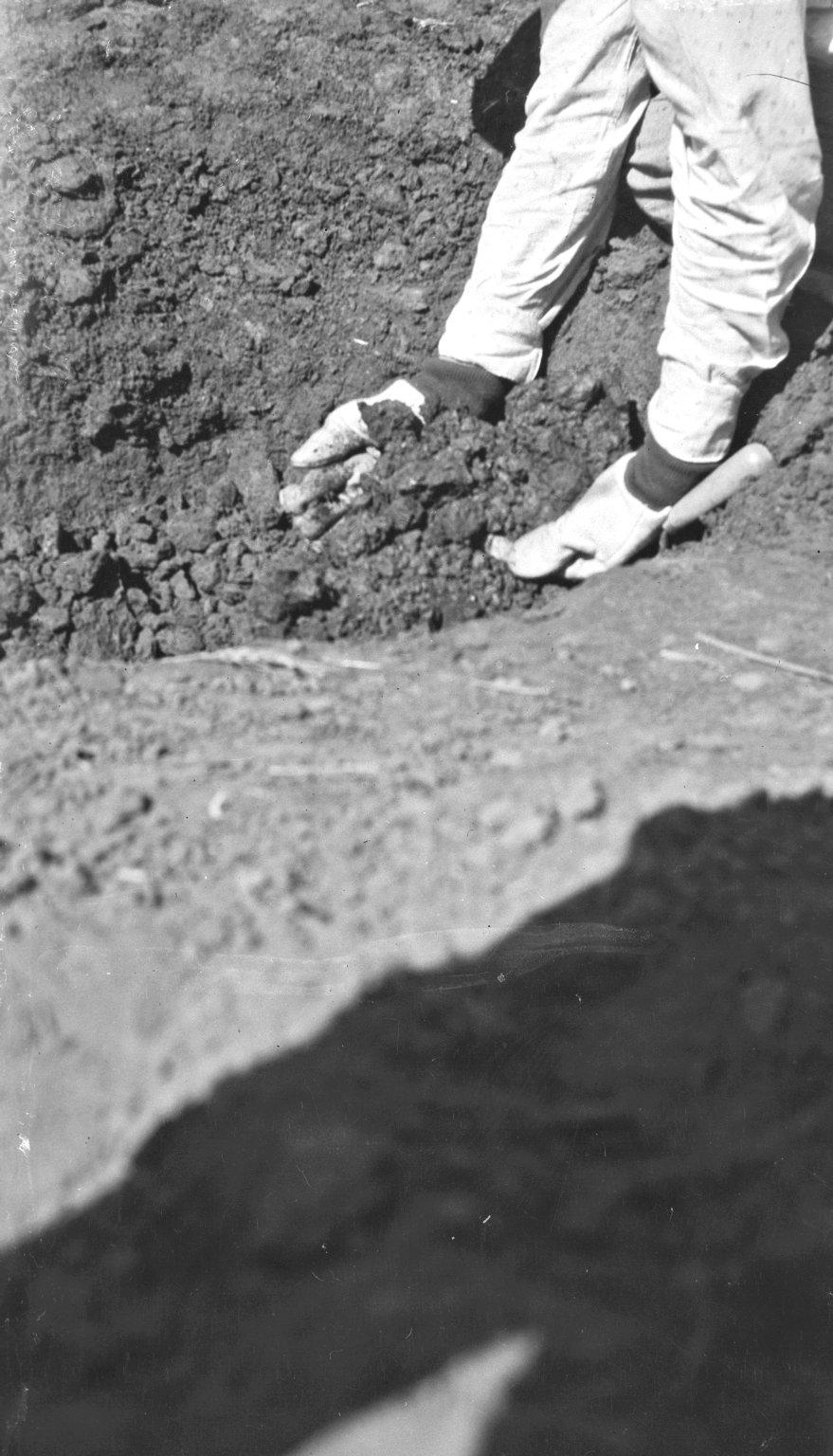 Excavation, closeup