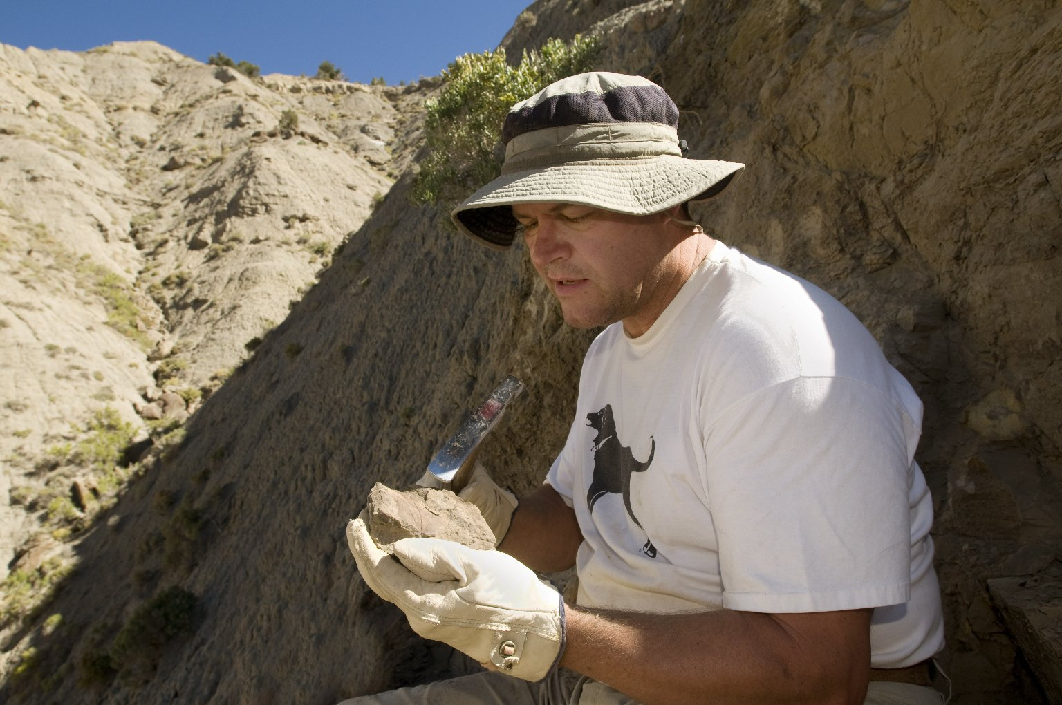 Dr. Kirk Johnson, DMNS Vice President of Research and Collections and Chief Curator, examines a specimen on the Kaiparowits Plateau.