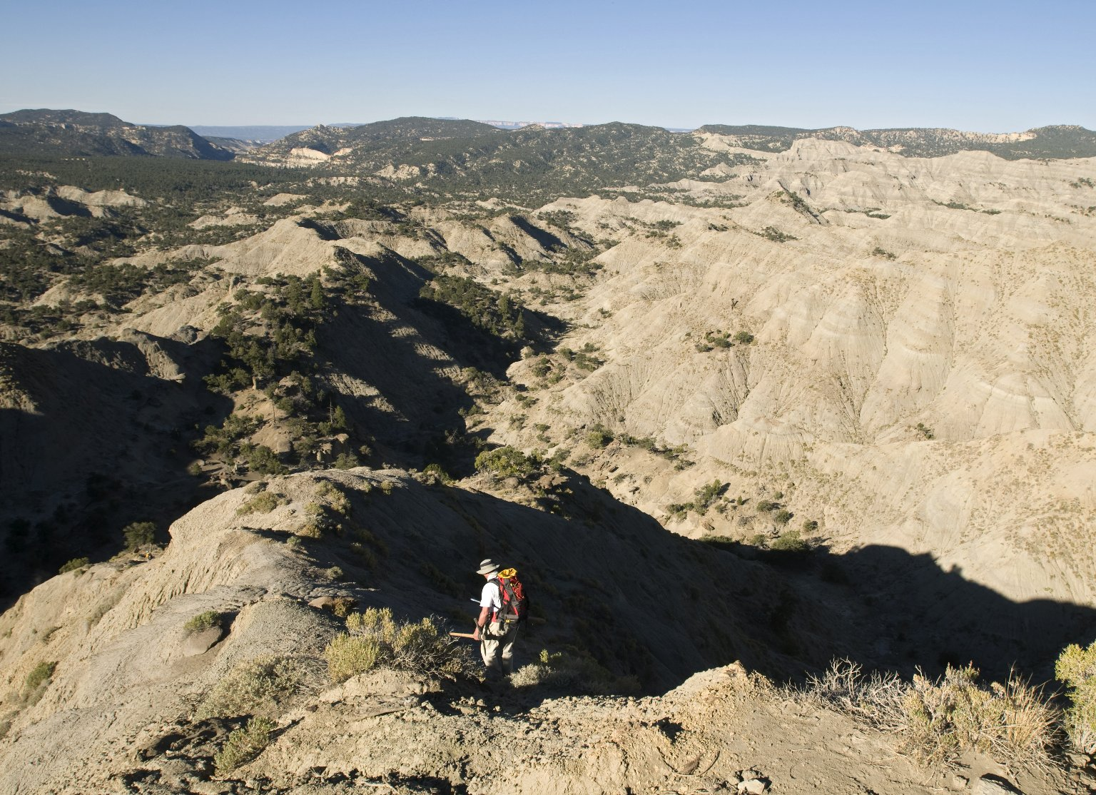 Dr. Kirk Johnson descends to a dig site on the Kaiparowits Plateau.