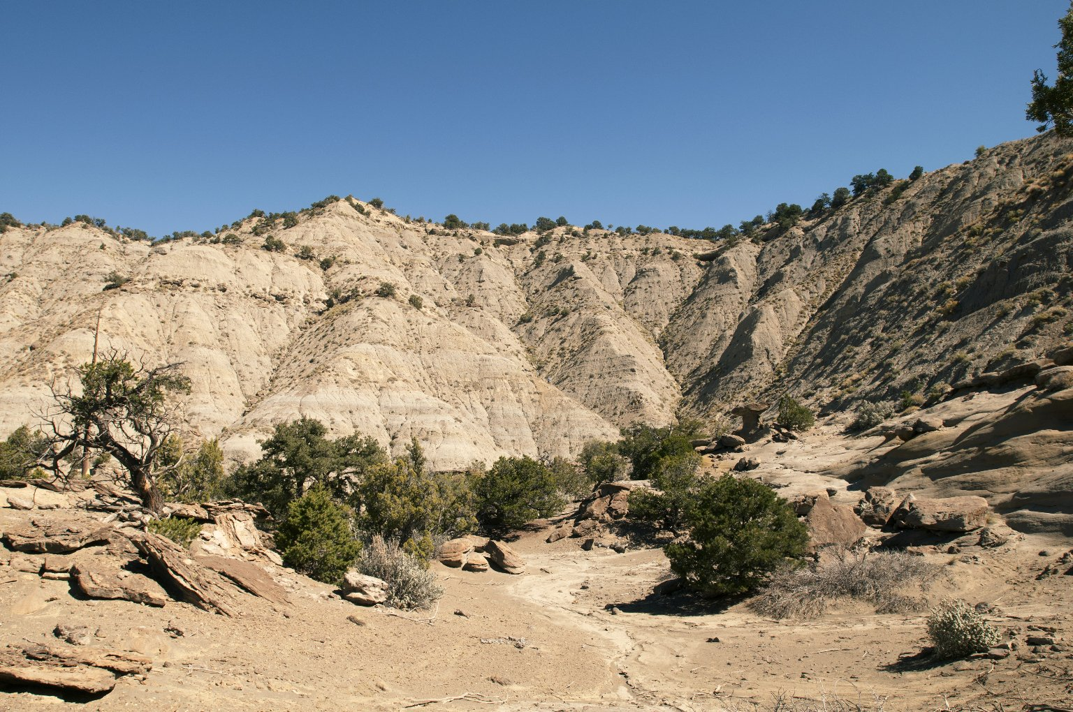 Distant view of two dig sites on the Kaiparowits Plateau.