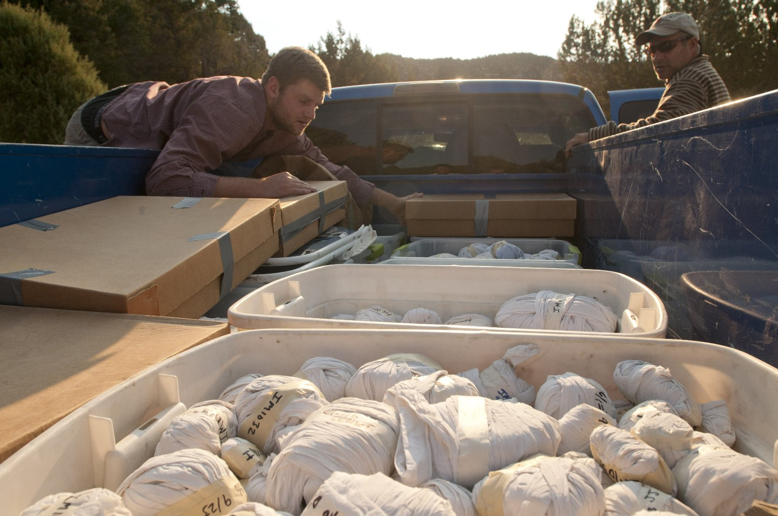 """L-R: DMNS Volunteer David Allen and an unidentified DMNS Volunteer place boxes of specimens on top of the previously loaded bins in the bed of the field truck affectionately known as """"Old Blue""""."""
