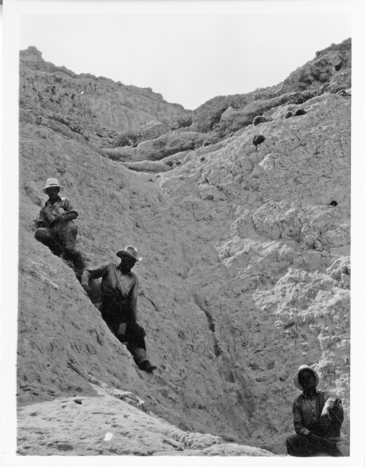 Workers in the field at Trigonias Quarry