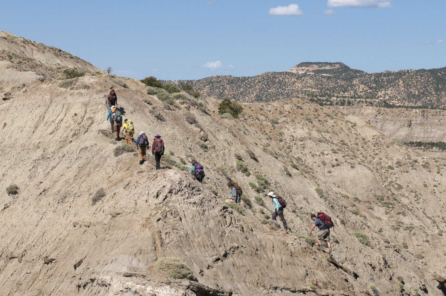 The DMNS group hikes up an incline along a ridgeline in the Kaiparowits Plateau.