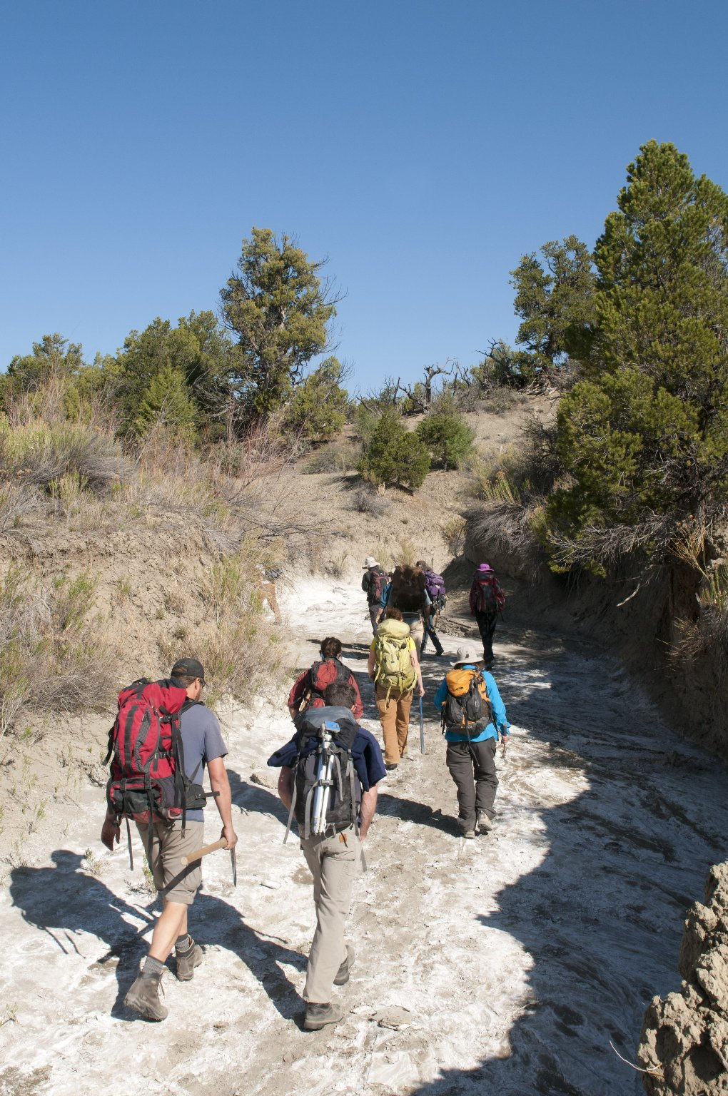 The DMNS group climbs a wash to get to their first dig site.