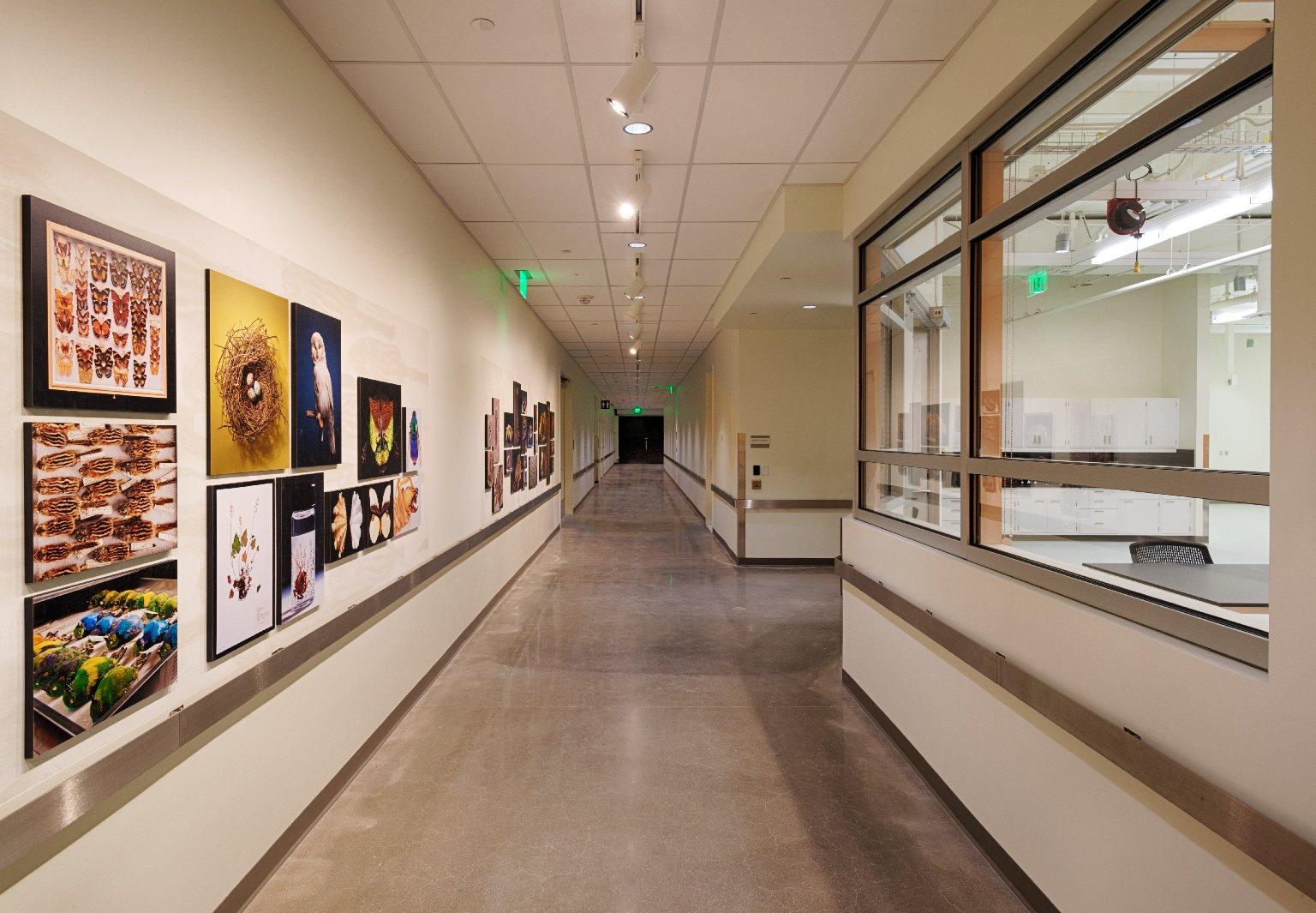 Avenir Collections Center, B1 Corridor