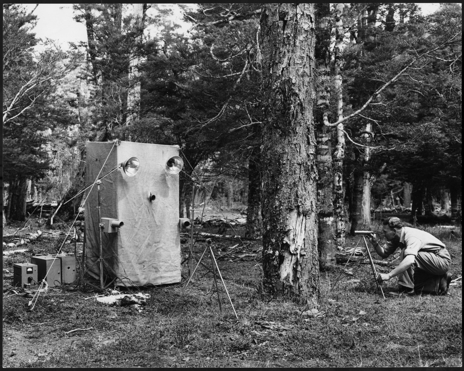 Kenneth Bigwood with a photographic hide