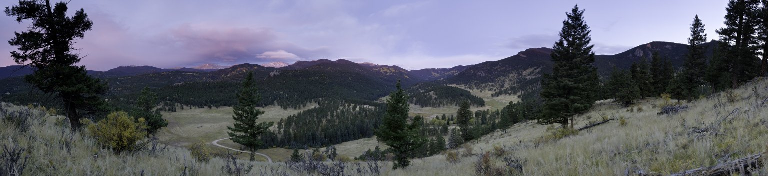 Field Location for the American Elk Diorama.