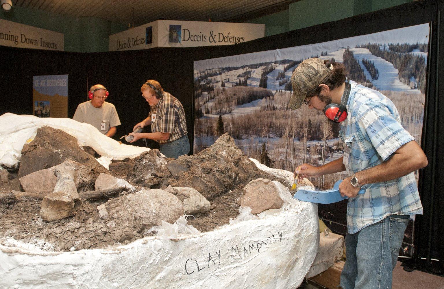 Clay Mammoth in the Atrium