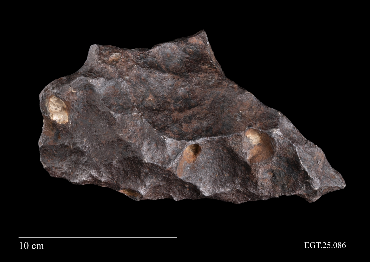 Meteorite from Canyon Diablo