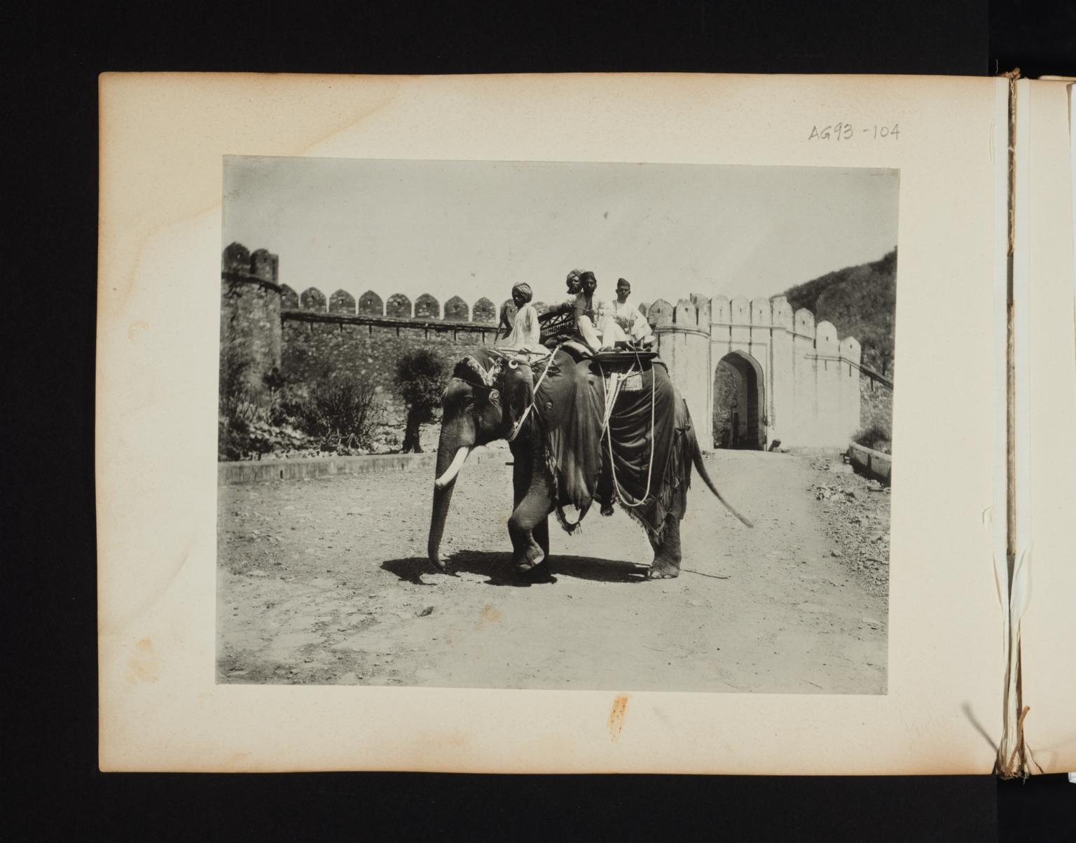 Four men on an elephant.