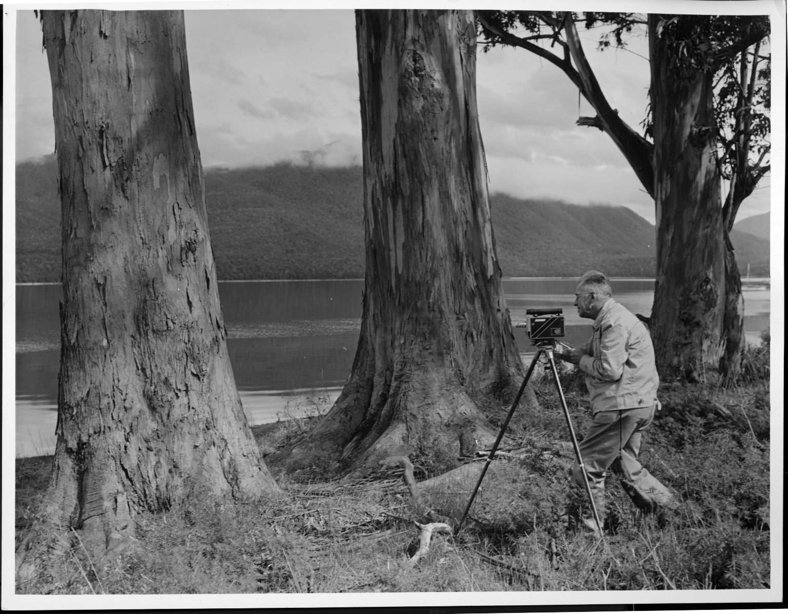 Alfred M. Bailey filmingin New Zealand