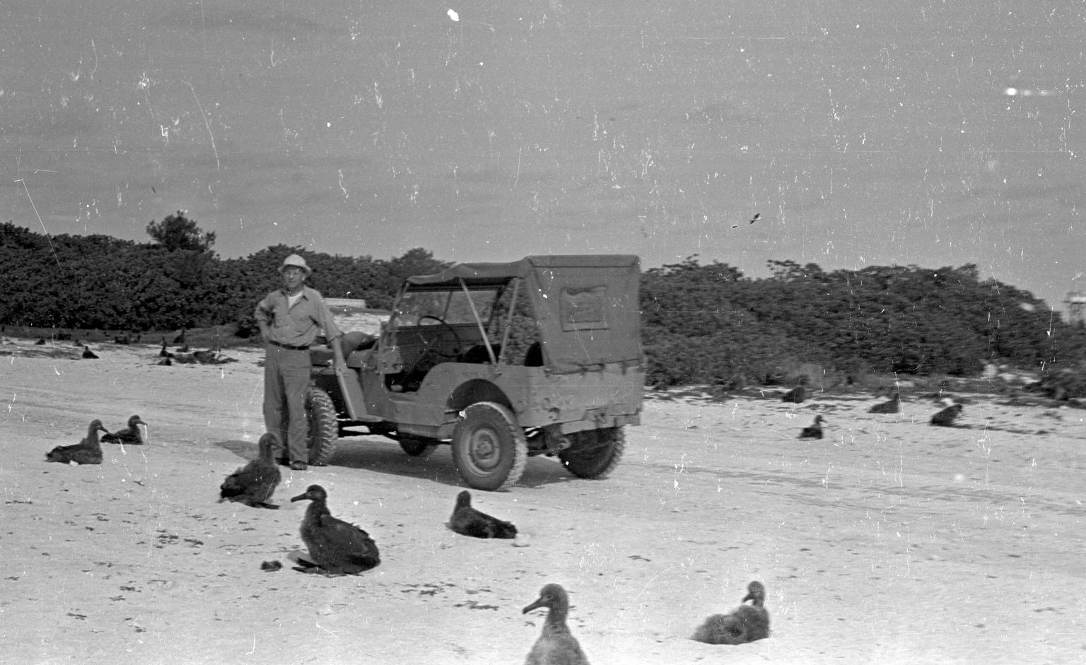 Fieldwork on Midway Atoll
