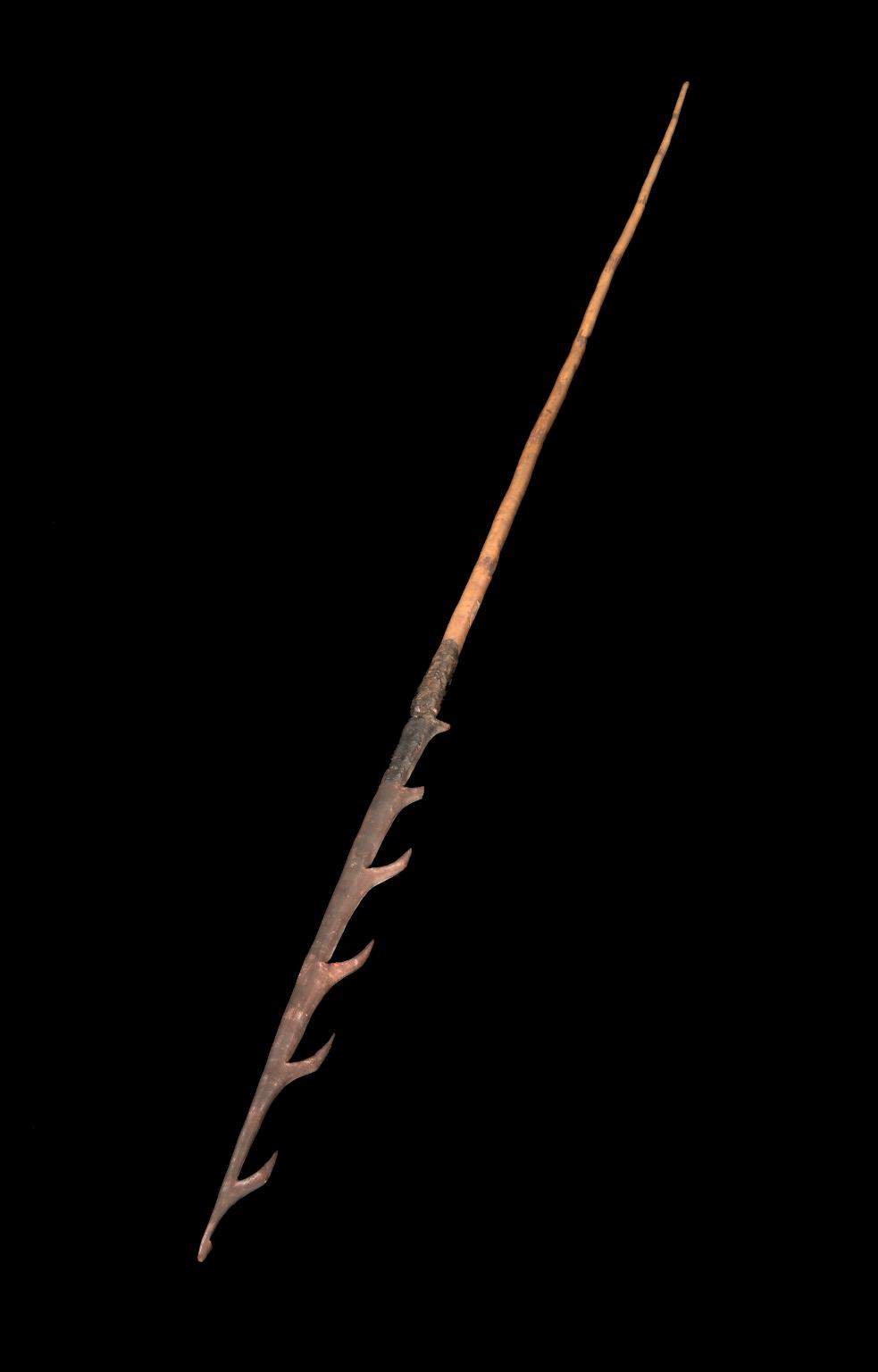 Aboriginal Fish Spear