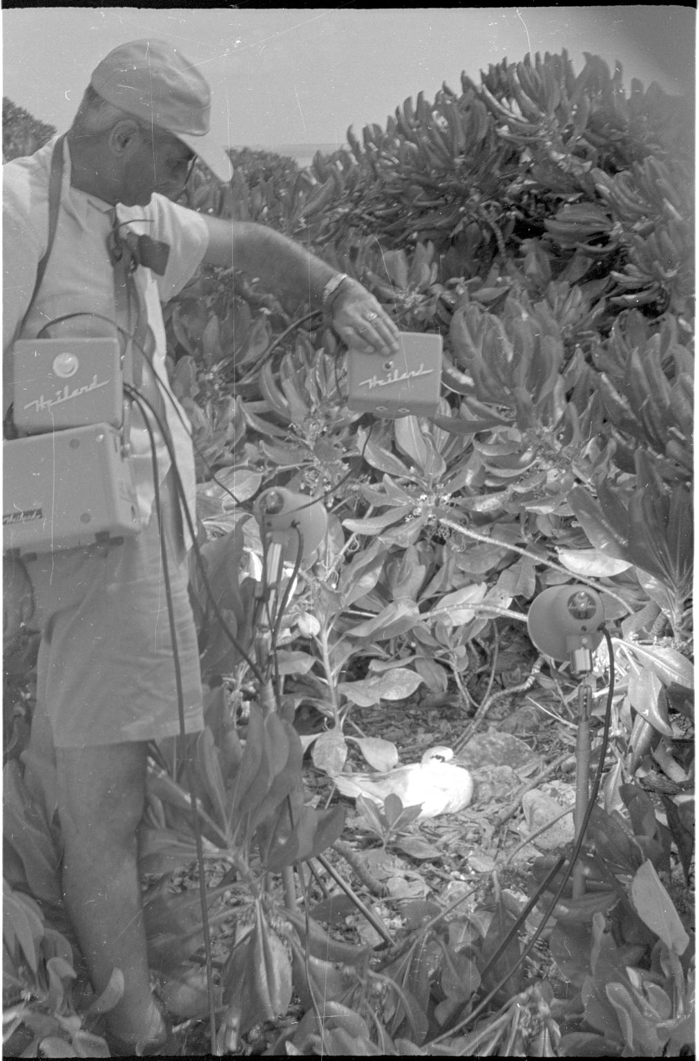 Fieldwork in Kiribati