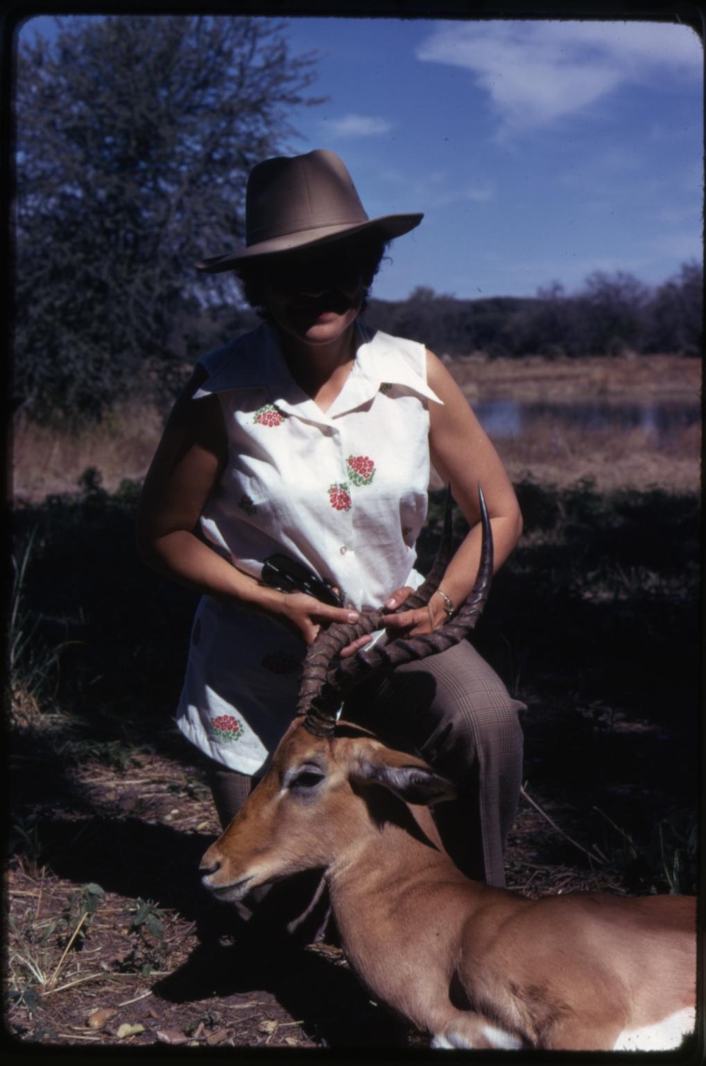 Impala specimen