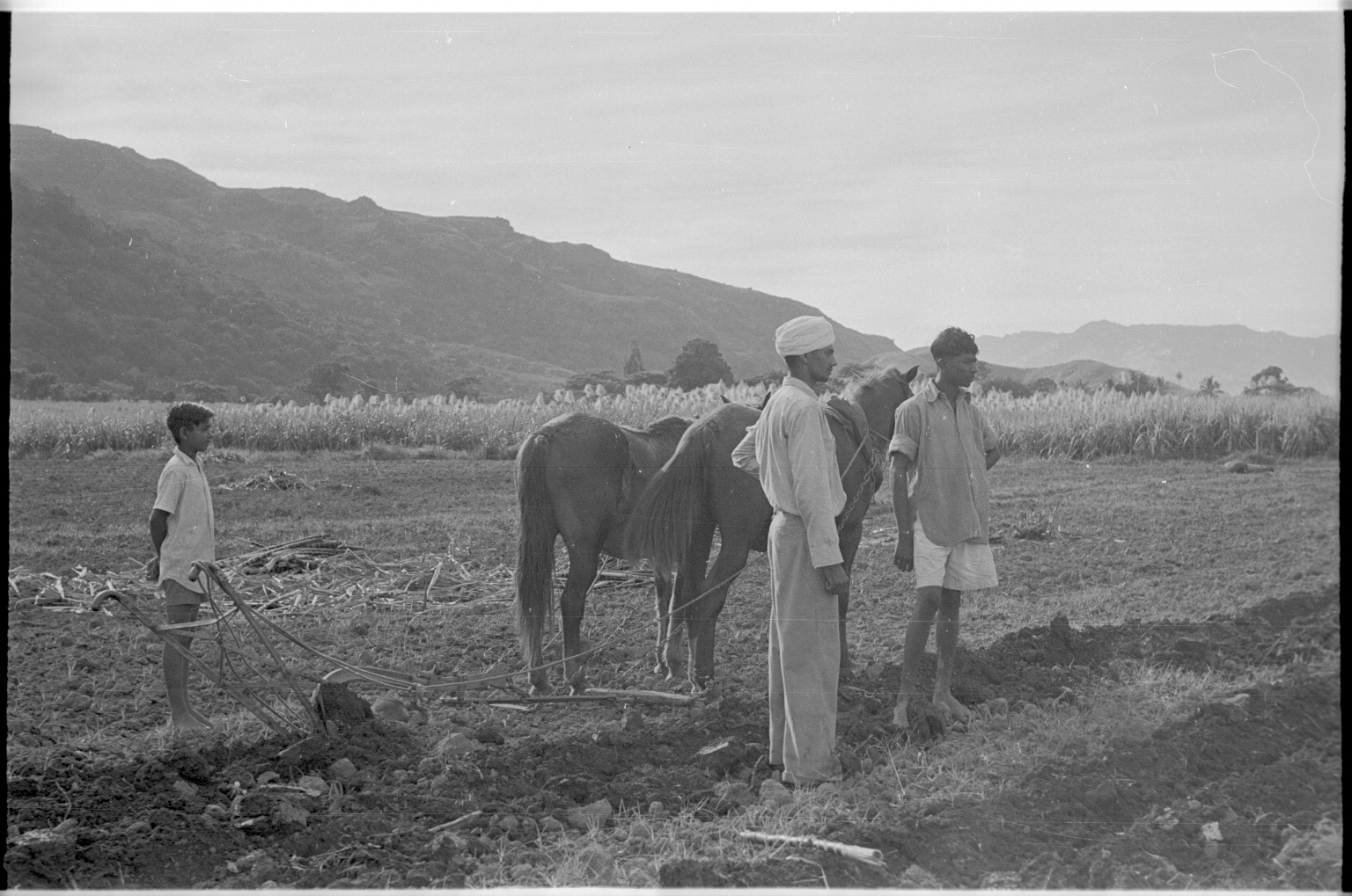 Fieldwork in Fiji
